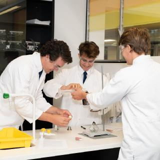 Year 12 Chemistry students
