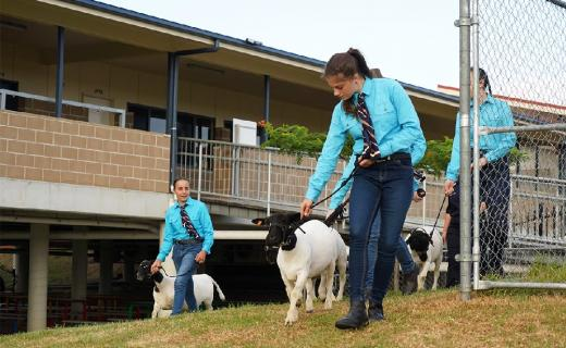 Extra-curricular opportunities in Agricultural Science help students learn in specialised interest areas
