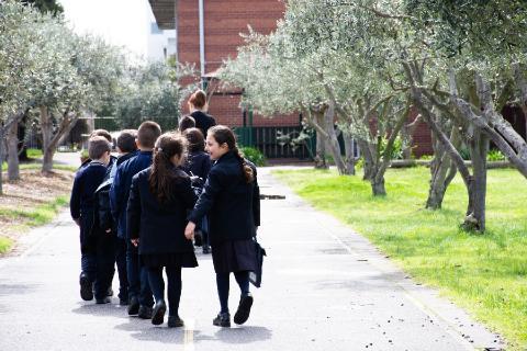 Junior School walking through our olive grove