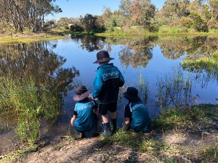 Primary students investigating life in the lake
