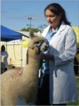 Student Imogen Vicary with her prize alpaca (Graft