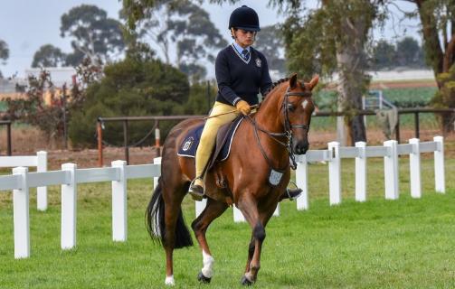 Equestrian - Sash & Marvin.jpg