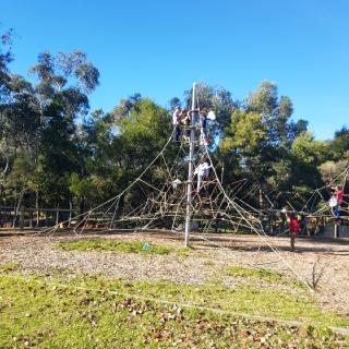 """Our """"spiderweb"""" climbing frame encourages independence"""