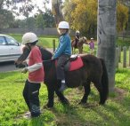 Horse riding lessons as part of our sports program